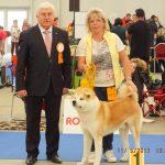 Prague Expo Dog Double  5.11.2017  V1,CAC,CACIB,BOB Richter: Long-Doyle Austin